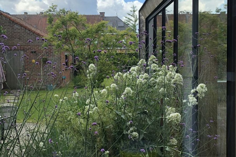 Town garden - Oudenaarde