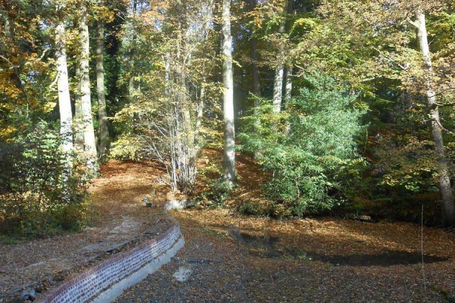 Pond banks Breivelde park - Grotenberge